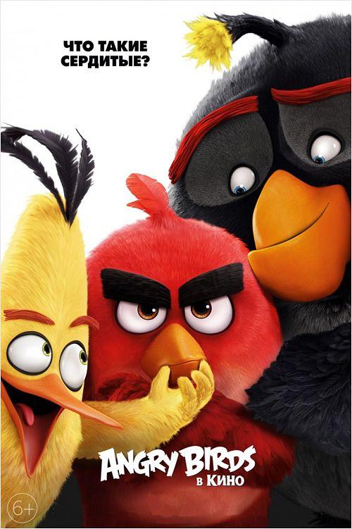 Angry Birds в кино (DVD) Angry Birds