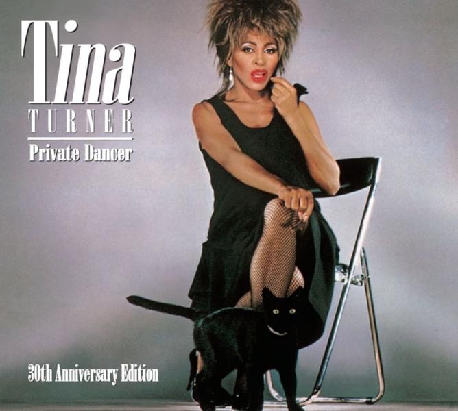 Tina Turner. Private Dancer (LP) night dancer