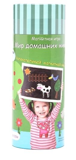 Настольная игра Мир домашних животныхПредставляем вашему вниманию настольную игру Мир домашних животных, с помощью которой ребенок сможет создавать различные картинки из жизни домашних животных на любых металлических поверхностях.<br>