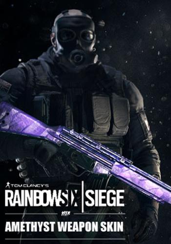 Tom Clancy's Rainbow Six: Осада. Amethyst. Дополнительные материалы