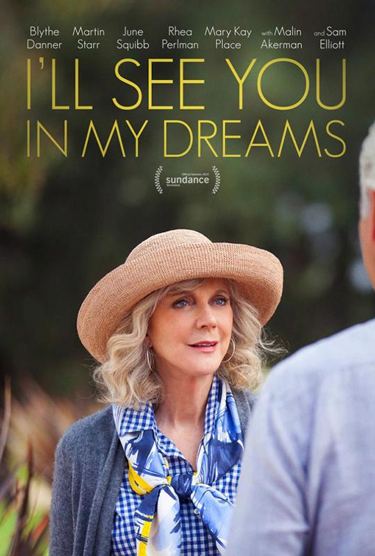 Я увижу тебя в своих снах (DVD)