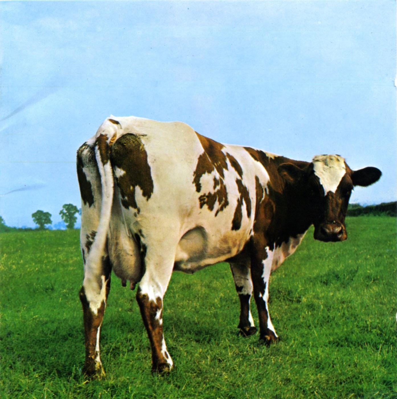 Pink Floyd: Atom Heart Mother (LP)Pink Floyd: Atom Heart Mother – пятый студийный альбом британской рок-группы Pink Floyd, выпущенный 10 октября 1970 года.<br>
