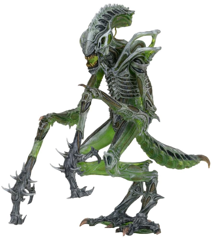 Фигурка Aliens: Series 10 – Mantis Alien (17 см)Фигурка Mantis Alien создана по мотивам фильма «Чужой» и воплощает собой богомолообразного Ксеноморфа. Фигурка оснащена огромным количеством точек подвижности, гибким хвостом и изумительной детализацией полупрозрачной поверхности тела.<br>