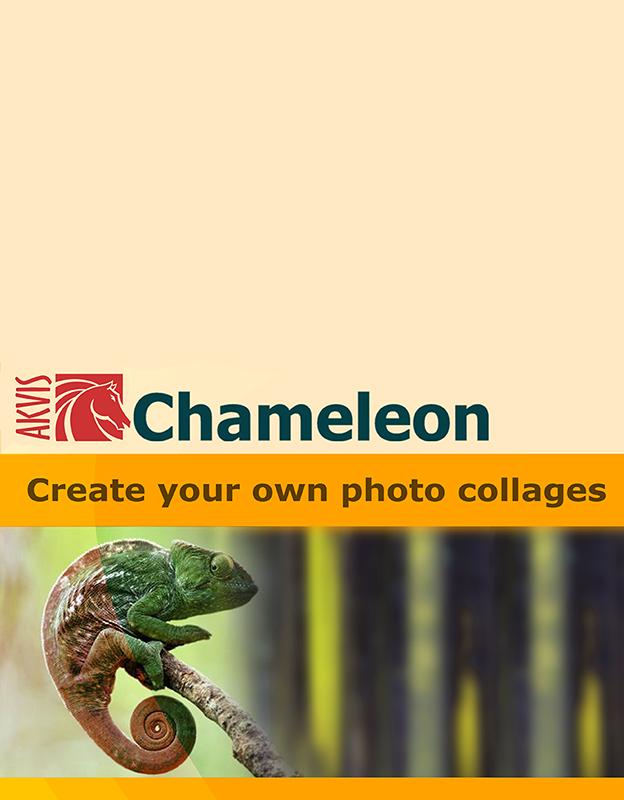 AKVIS Chameleon Business [Цифровая версия] (Цифровая версия) sacred citadel цифровая версия