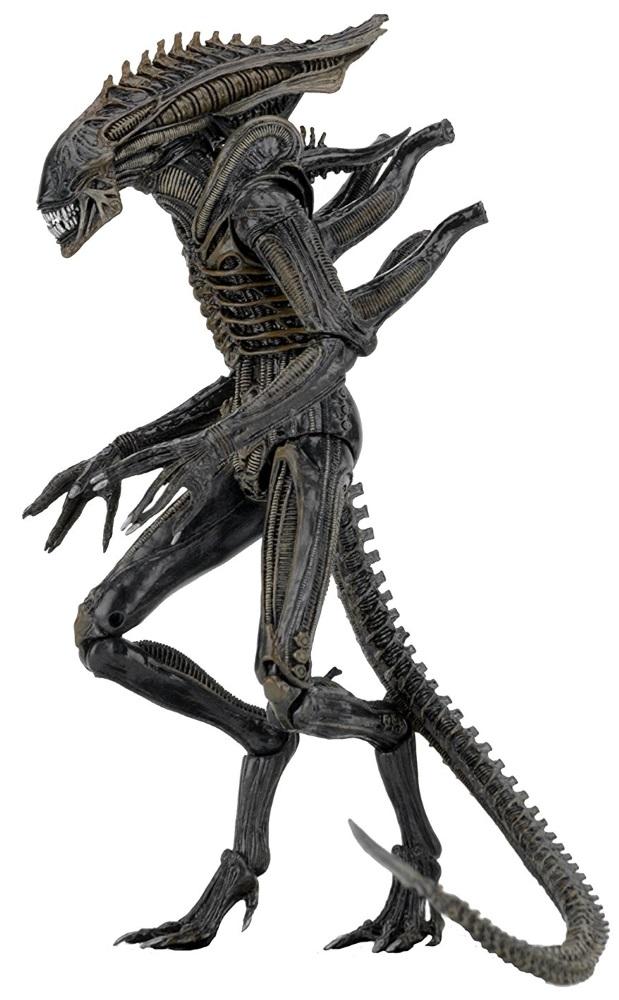 Коллекционная фигурка Aliens: Series 11 – Defiance Xenomorph (23 см) фигурки игрушки neca фигурка aliens 7 series 2 sgt windrix 4шт in
