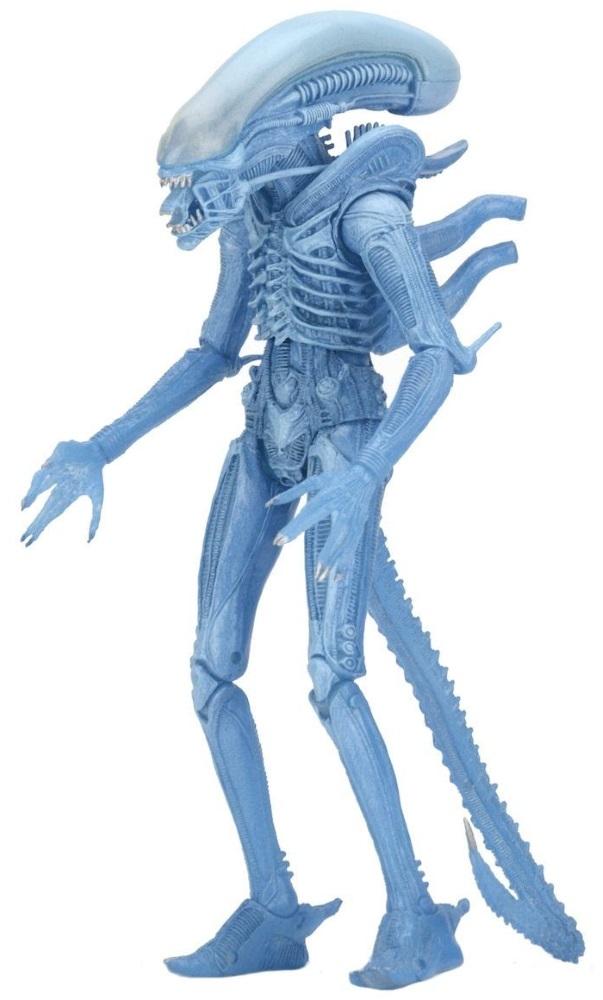 Коллекционная фигурка Aliens: Series 11 – Kenner Blue Warrior Alien (18 см)