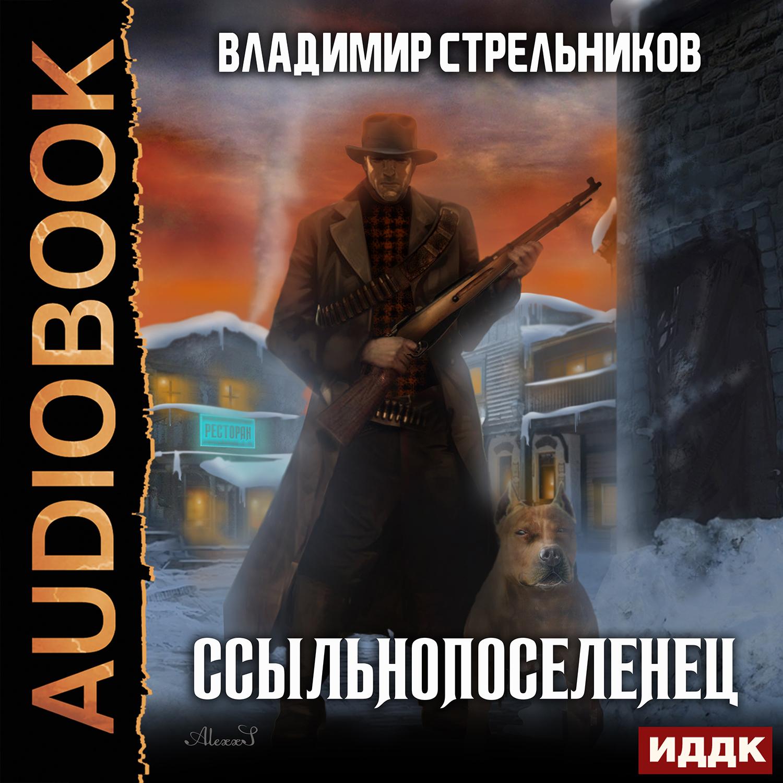 читать книги владимира стрельникова онлайн бесплатно