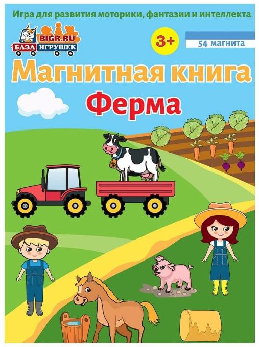 Магнитная книга-игра Ферма.