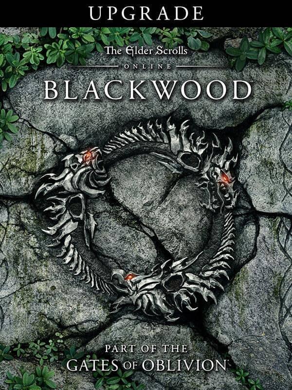 Фото - The Elder Scrolls Online: Blackwood. Upgrade. Дополнение (Steam-версия) [PC, Цифровая версия] (Цифровая версия) the elder scrolls online morrowind upgrade дополнение [ps4 цифровая версия] цифровая версия