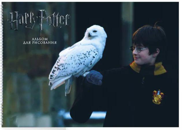 Альбом для рисования Гарри Поттер и философский камень (формат А4)