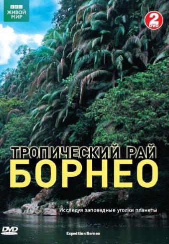 BBC: Тропический рай Борнео (2DVD) Expedition BorneoНетронутый мир тропических джунглей, неизведанных пещер, редчайших видов животных в документальном фильме BBC: Тропический рай Борнео<br>