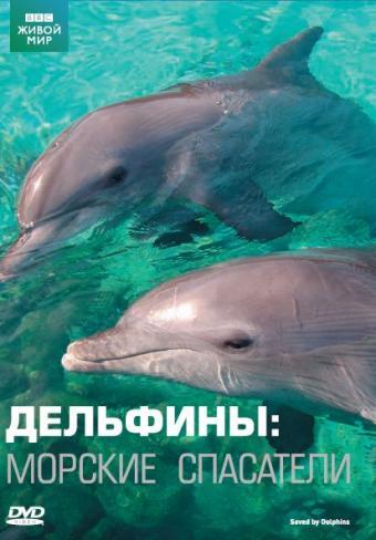 BBC: Дельфины. Морские спасатели Saved By Dolphins