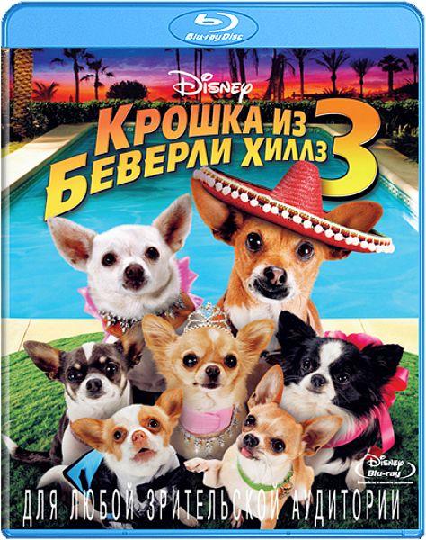 Крошка из Беверли Хиллз 3 (Blu-ray) Beverly Hills Chihuahua 3: Viva La Fiesta!В фильме Крошка из Беверли Хиллз 3, когда Папи с сопровождающей его компанией перебираются в роскошный отель, то его самый юный щенок по кличке Роза чувствует себя заброшенным, и Папи должен сделать все, чтобы доказать, что этот щенок очень важен для него<br>