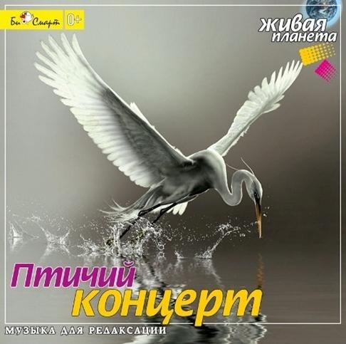 Сборник. Птичий концерт. Целебная музыка