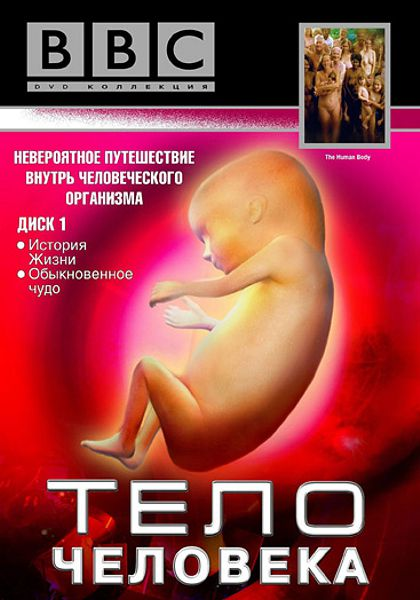 BBC: Тело человека. Часть 1 BBC: The Human Body