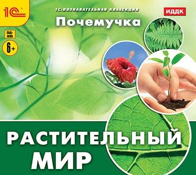 Почемучка. Растительный мир разнообразный мир растений