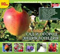 Сад и огород. Энциклопедия