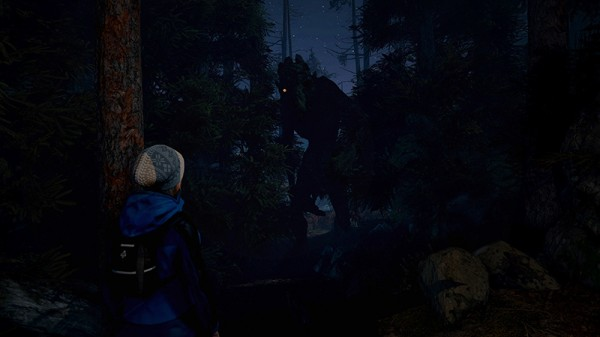 Through the Woods. Collector's Edition [PC, Цифровая версия]