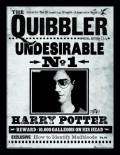 Постер в раме Harry Potter: The Quibbler