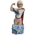 Фигурка Women Of The DC Universe Series 3 Power Girl Bust (14 см)