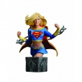 Фигурка Women Of The DC Universe Series 3 Supergirl Bust (14 см)