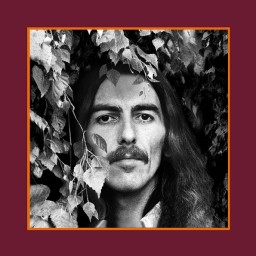 George Harrison – The Vinyl Collection (18 LP)