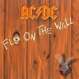 AC/DC: Fly On The Wall (CD)