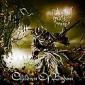 Children Of Bodom. Relentless, Reckless Forever